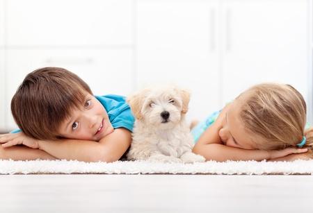 puppy love: Niños en casa con su nueva mascota - un perro blanco esponjoso Foto de archivo