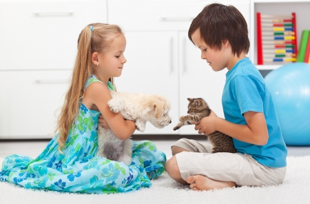 kids hugging: Kids playing with their pets - dog and cat Stock Photo