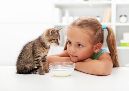 gato jugando: Yo y mi gato - ni�a y su nuevo gatito de conocer a los dem�s Foto de archivo