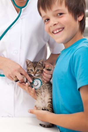 Veterinary care concept with young boy and his cat at the doctor Stock Photo - 15720207