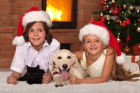 Happy kids and their pets celebrating Christmas together - cat and dog laying with owners photo