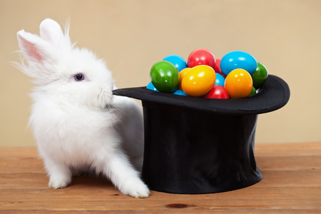 illusionist: Magical easter with rabbit and colorful eggs in magician hat - on golden background Stock Photo
