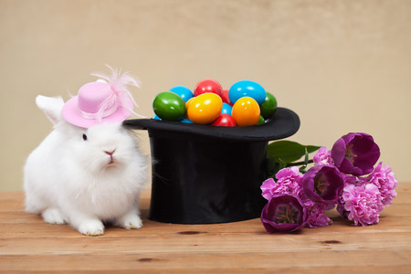yellow fleece: Cute easter bunny with spring flowers and colorful eggs in magician hat Stock Photo