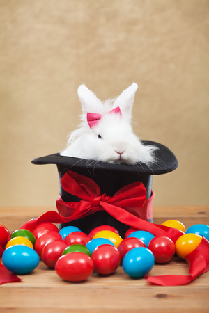bunnie: Cute but grumpy easter bunny sitting in magician hat with colorful dyed eggs