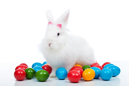 bunnie: Cute white easter bunny among colorful eggs - isolated