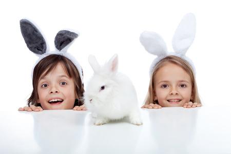 Enfants regardant leur animal de lapin blanc - portant des oreilles de lapin, isolé