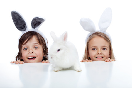 bunny girl: Kids looking at their white rabbit pet - wearing bunny ears, isolated