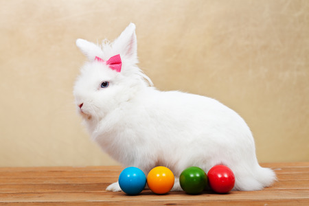 fleecy: Elegant white rabbit wearing a pink bow sitting on wooden floor with easter eggs