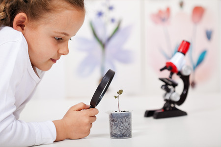 recipient: Young girl study a plant growing in plastic recipient - science class in elementary school