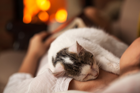 A purrfect evening - woman relaxing with her kitten laying on a couch by the fire of a fireplace, shallow depth