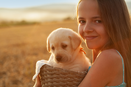 Happy young girl holding her adorable labrador puppy dog in a basket - backlit by the setting sun, closeup