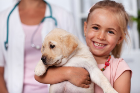 Happy little girl holding her cute puppy dog at the veterinary doctor office - closeup, focus on the dog Zdjęcie Seryjne
