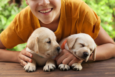 Happy teenager boy posing with his cute labrador puppies, smile and hug the doggies - close up