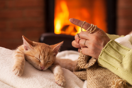 Woman knit in front of the fireplace with her exhausted kitten sleeping in her lap having its paws stretched in front Zdjęcie Seryjne