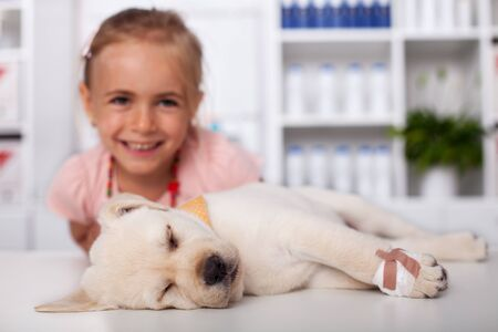 Little girl at the veterinary healthcare clinic - happy that her puppy got away with only a bandage on its paw Foto de archivo
