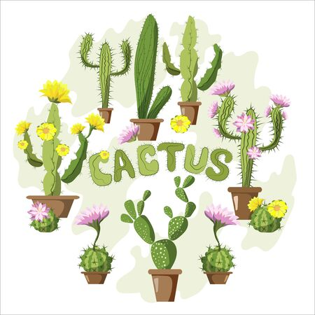 A set of different cacti, great design for any purpose. Blooming cactus on a bright background. Modern card design. Vector illustration in cartoon style.