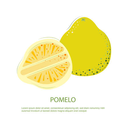Juicy rep pomelo. Composition of whole and cut pomelo
