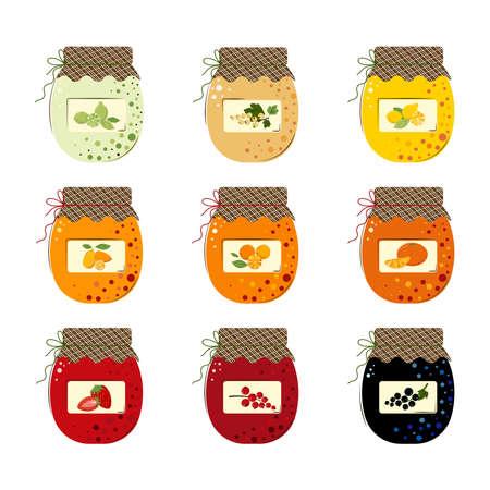 Set of Jars of Fresh Berries Jam and Sunny Juicy Fruits Jam. Homemade handmade jam from Limes, Mandarins, Kumquats, Lemons, Oranges, Blackcurrant, Red currant, White Currant, Strawberry. Flat style Vector Illustration isolated on white Background.