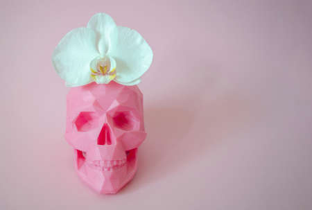 Skull with flower on a pink background for murderous beauty industry banner with space for text