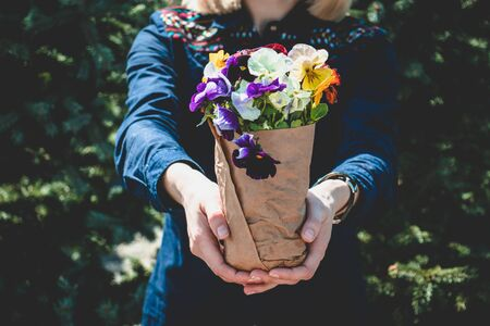 Bouquet of pansies in a craft paper in a womans hand. Spring`s concept.