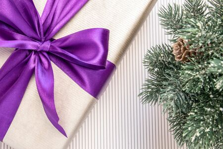 Gift in paper with violet ribbon and bow-knot, branches of spruce on a light background. Banco de Imagens