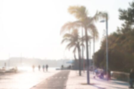 Blurred. Background. Portugal. Europe. Walking path in the promenade. The alley with palm trees and walking people.