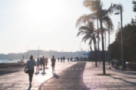 Blurred background. The alley with palm trees and walking people. Coastline. Walking path in the promenade. Portugal. Europe.
