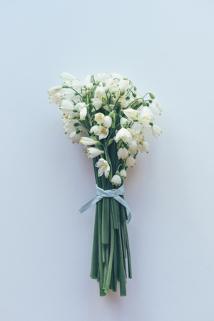 Closeup of a bouquet of fresh snowdrops, tied with a blue ribbon, on a white background, vertical format 版權商用圖片