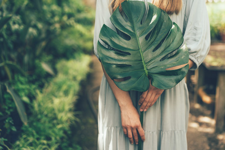 Figure of the girl and leaf monstera close-up, interior of the greenhouse. Ecological, healthy lifestyle concept.