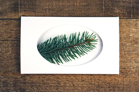 closeup fir branches in white frame on wooden rustic background Banco de Imagens