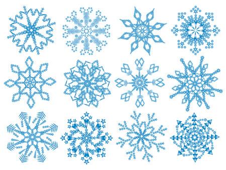 Twelve vector snowflakes.
