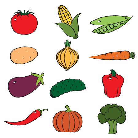Vegetables, clip-art on white background. Vector