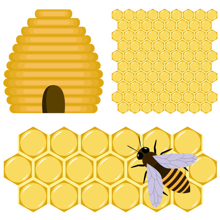 Honey set:  bee, beehive and honeycomb