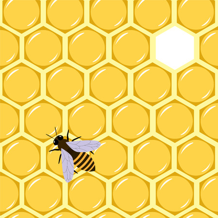 Honey seamless Vector