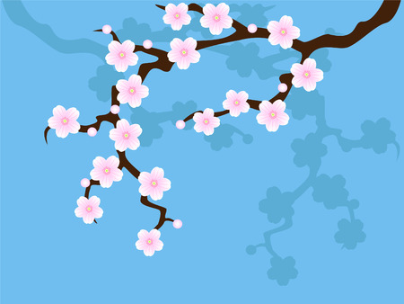 Sakura blossom on blue Vector