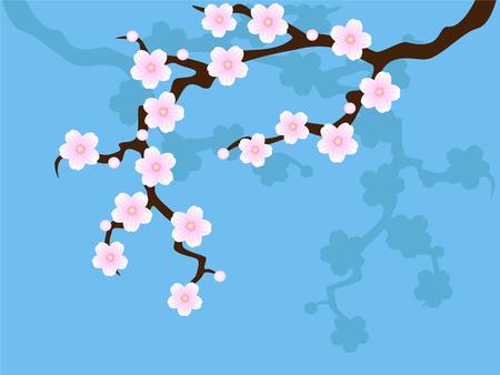 Sakura blossom on blue