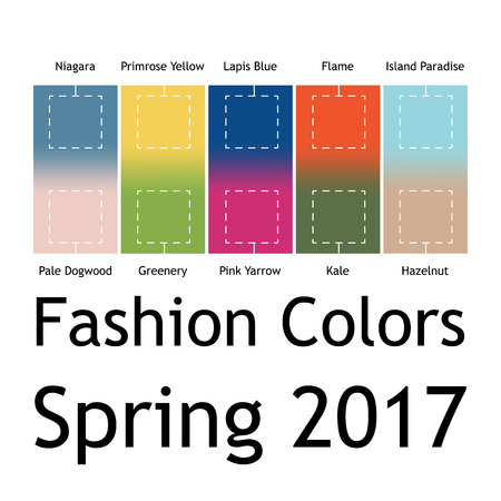 kale: Blurred fashion infographic with trendy colors of the 2017 Spring. Niagara, Primrose Yellow, Lapis Blue,Flame,Island Paradise,Pale Dogwood,Greenery,Pink Yarrow,Kale,Hazelnut. Gradient mesh infographic