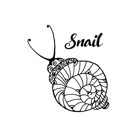 Doodle style fun lacy snail Illustration