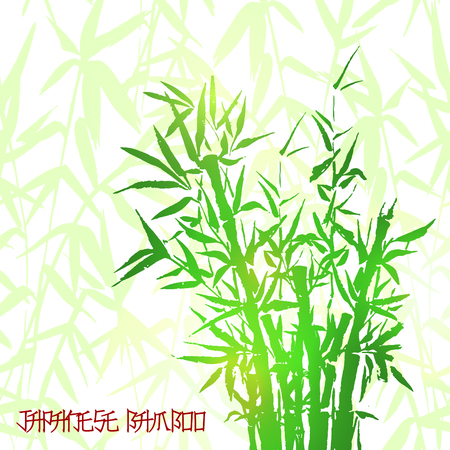 Bamboo green tree japanese plant or tree. Traditional sumi painting vector illustration for wallpaper or healthy terapy cosmetic products design