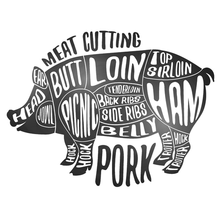 Meat cutting - pork. White chalkboard poster. Cut of pig meat set. Butcher diagram, scheme and guide - Pork. Vintage typographic hand drawn design. Illustration