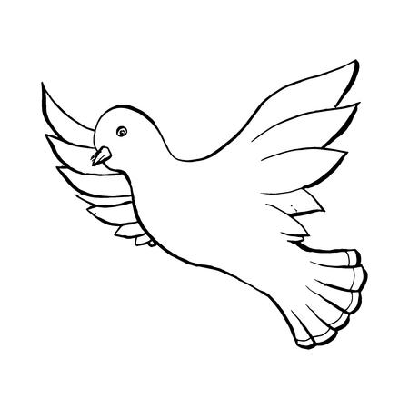 Duif vliegende vogel in schetsstijl. Overzicht of contour tekening. Hand getrokken Vector geïsoleerde illustratie.