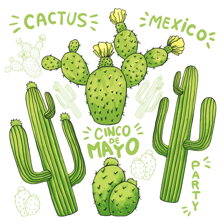Set of mexican cactus with spines or thorns and flowers as banner for cinco de mayo holiday or celebration. Edible or eatable, esculent cacti like saguaro, indian fig or mammillaria cactus.Latin theme Illustration
