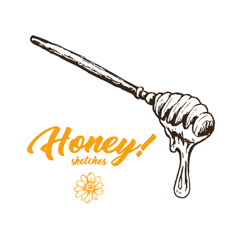 Honey Sketch Spoon, Honey Hand Drawn Super food Organic Products Design, Vector Illustration. Black Outline Engraving Elements. Çizim