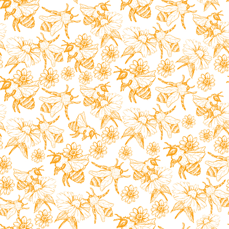 Honey Bee Seamless Pattern, Sketch Vector Illustration With Bumble Bee Hives In Vintage Style, Yellow Hand Drawn Honeycomb On White Background