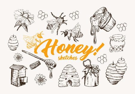 Honey Sketches Set, Bee Hive, Honey Jar, Barrel, Pot, Spoon And Flower Hand Drawn Superfood Organic Products, Vector Illustration. Black Outline Engraving Elements.Vintage Isolated Vector Illustration