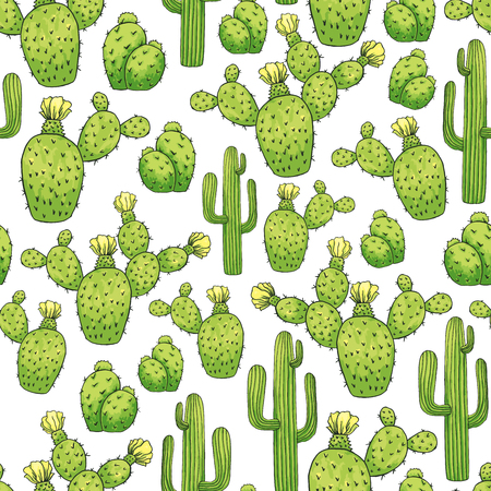 Mexican Cactus Seamless Pattern. Green Color. Spines or Thorns and Flowers. Edible Esculent Cacti Like Saguaro, Indian Fig or Mammillaria. Latin theme for Wallpaper or Fabric Textile Printing Design