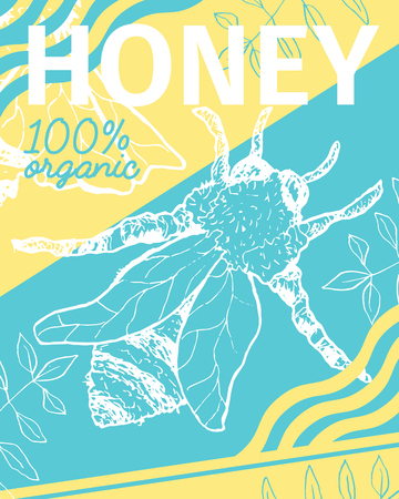 Poster with bee and fresh honey. Sketch honeycomb theme. Brochure cover for healthy nutrition market or shop, store with beeswax. Insects food retail theme Illustration