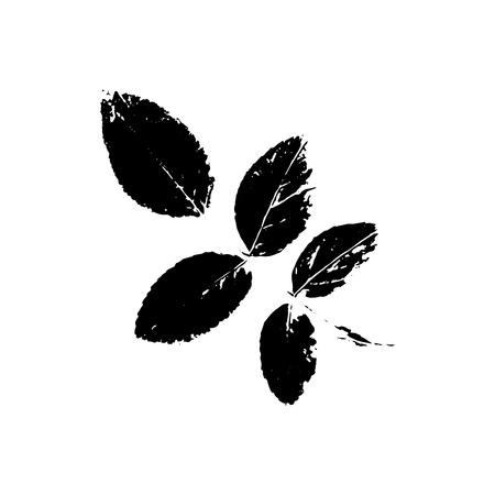 Silhouette de sorbier noir avec feuille d'arbre. Clipart isolé unique. Impressions de feuilles sur branche. Thème de la flore et de la nature pour la conception de scrapbook de découpe de papier
