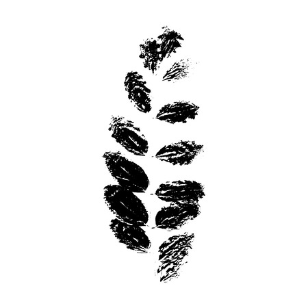Black rowan or sorb silhouette with leaf of tree. Single isolated clipart. Prints of leaves on branch. Flora and nature theme for paper cutting scrapbook design