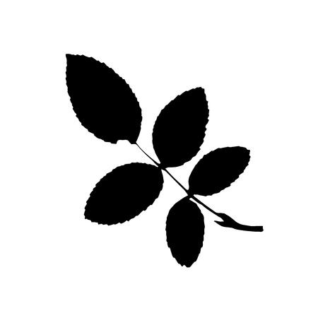 Silhouette noire avec feuille d'arbre. Clipart isolé unique. Impressions de feuilles sur une branche. Thème de la flore et de la nature pour la conception de scrapbook